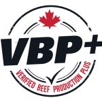 vbp_wordpress