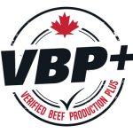 vbp_wordpress